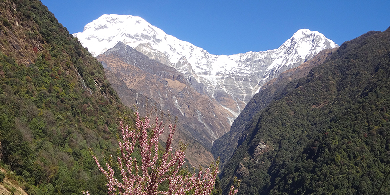 ABC Trek, Annapurna Base Camp Trek, Everest Base Camp Helicopter Tour